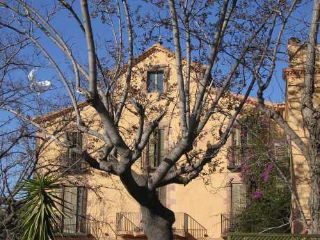 Parque Guell Antoni Gaudi La Masía Joan Miró